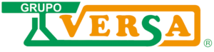 logo-versa3