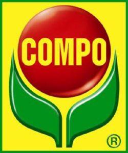 script-img-logo_compo